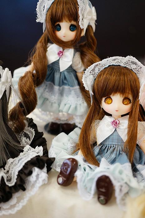 13-6-9-koimari-018.jpg