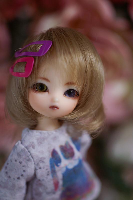 momo-015.jpg