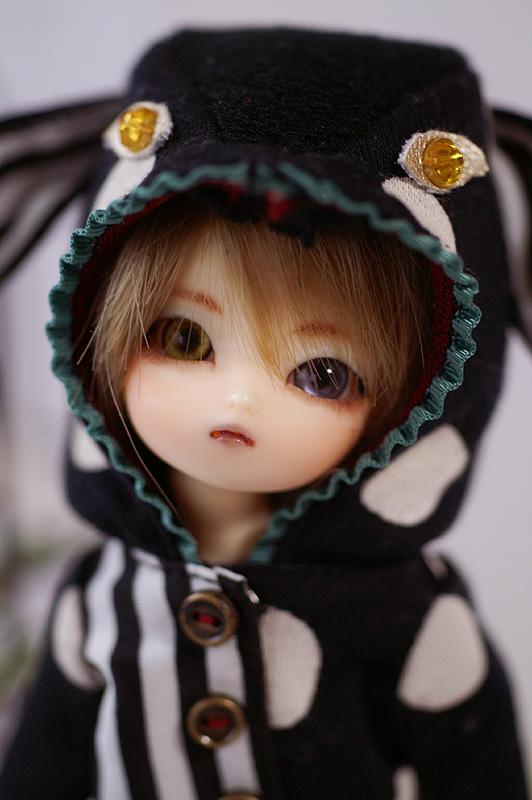 momo-03.jpg