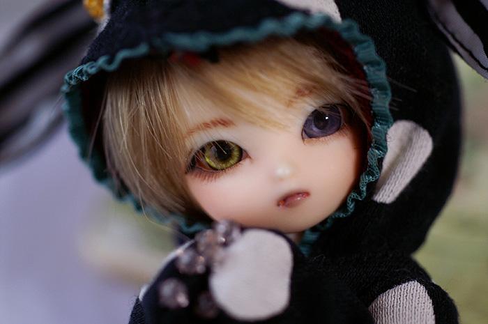 momo-04.jpg