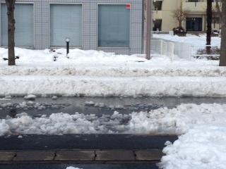 雪中央分離帯