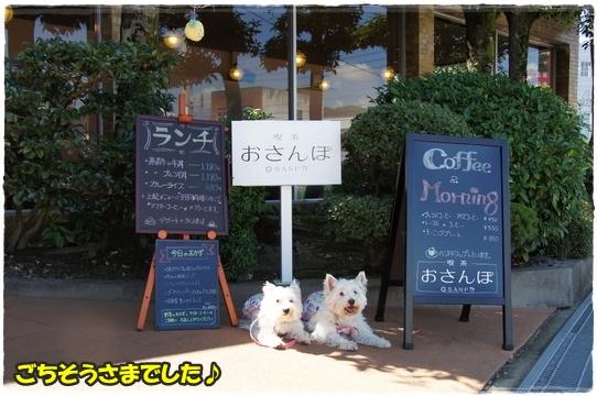 cafe8