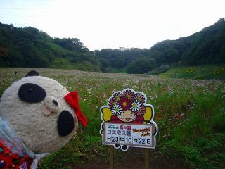 くりはなちゃんとパチリ2011