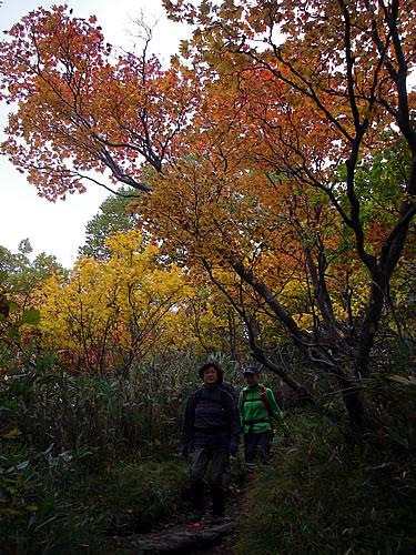 hitokoma2011-1010-3.jpg