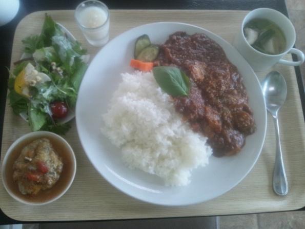 鶏肉と夏野菜のカレー