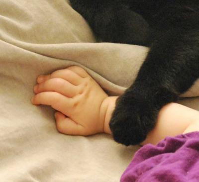 もっさもっさのお姉ちゃんの手