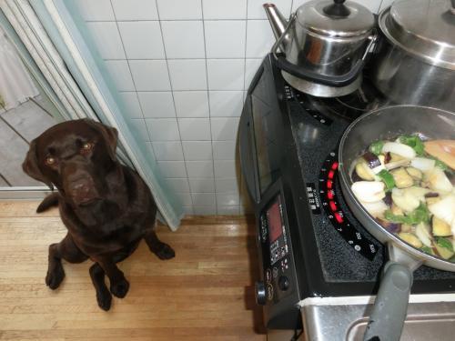 キッチンにて