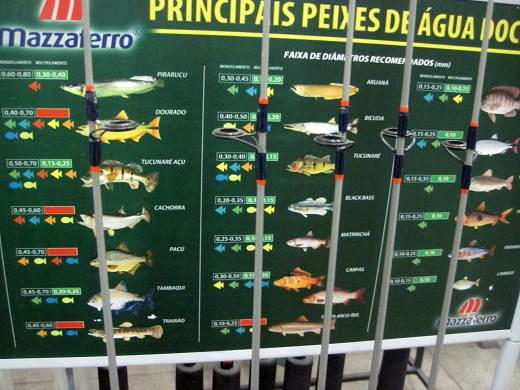 魚種パワー早見表
