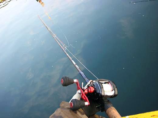のんびりウキ釣り