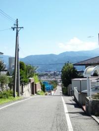 松本城の見える道
