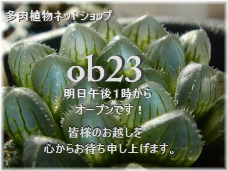 ob23-1 ミニ・ブルーレンズ