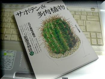 DSC00048350pc.jpg