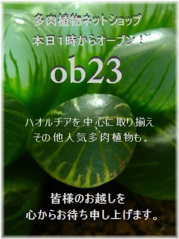 DSC07520-open_20140203102500a05.jpg