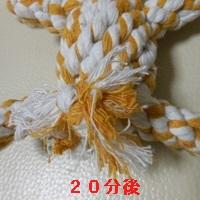081-13-12-16-1b.jpg