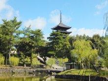 ヒカルのブログ-興福寺1