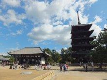 ヒカルのブログ-興福寺2