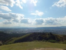 ヒカルのブログ-若草山2
