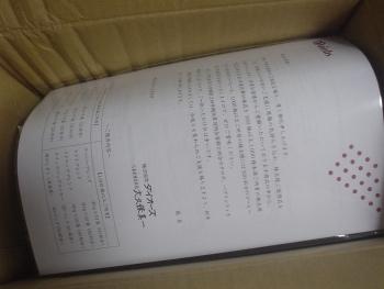 DSC07218.jpg