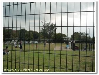 昭和記念公園(6)