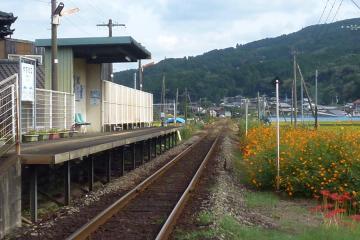 駅の光景_2011(6)