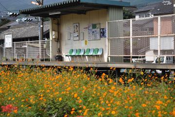 駅の光景_2011(7)