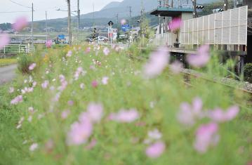 駅の光景_2011(11)