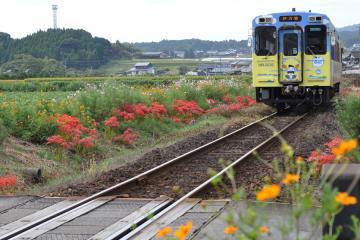 駅の光景_2011(12)
