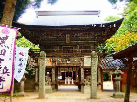 桜井神社3