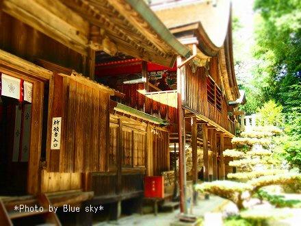 桜井神社9