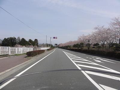 2012-04-13_09-48-11.jpg