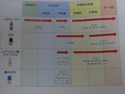 DSC07619.jpg