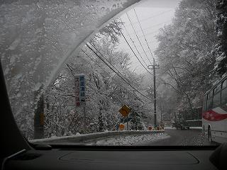 2008.02.03-13.18.51.jpg