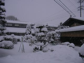 2008.02.03-16.59.20.jpg