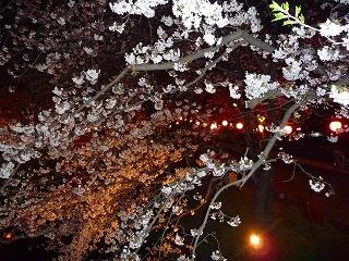 2009.04.04-20.42.15.jpg