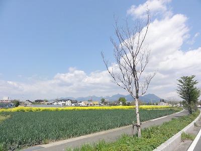 2011-04-29_09-56-33.jpg