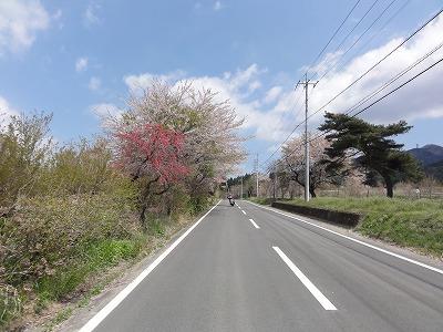 2011-04-29_10-32-58.jpg