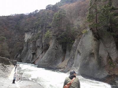 2011-04-29_12-47-17.jpg