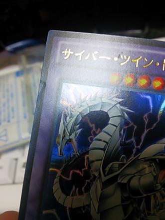 syokikizule1_331_442.jpg