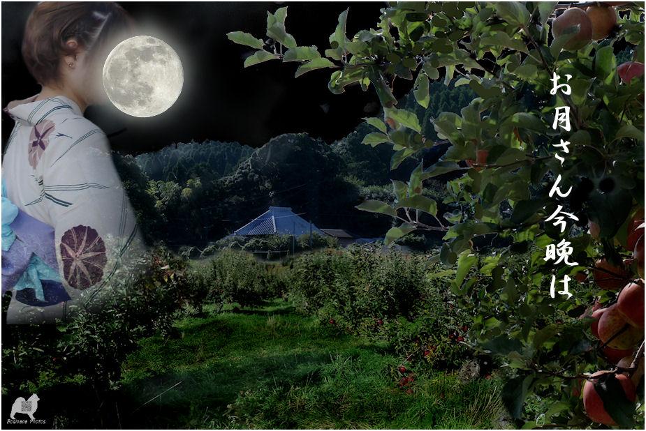 お月さん今晩は
