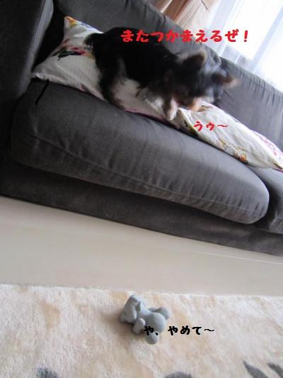 嫌がるネズミ