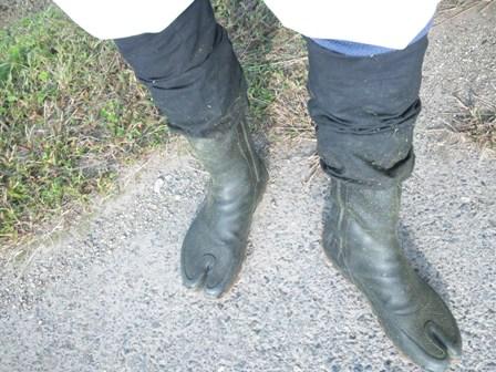 足袋ながぐつ & カバー