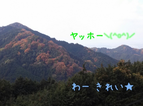 2013120121515215c.jpg