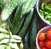 2011野菜5種