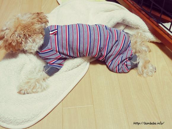 犬 ロンパース