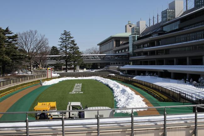 東京競馬場・雪5