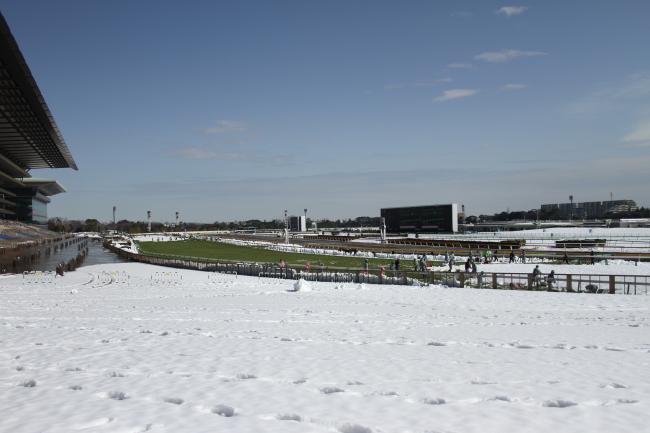 東京競馬場・雪7
