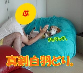 12_08_04_01_.jpg