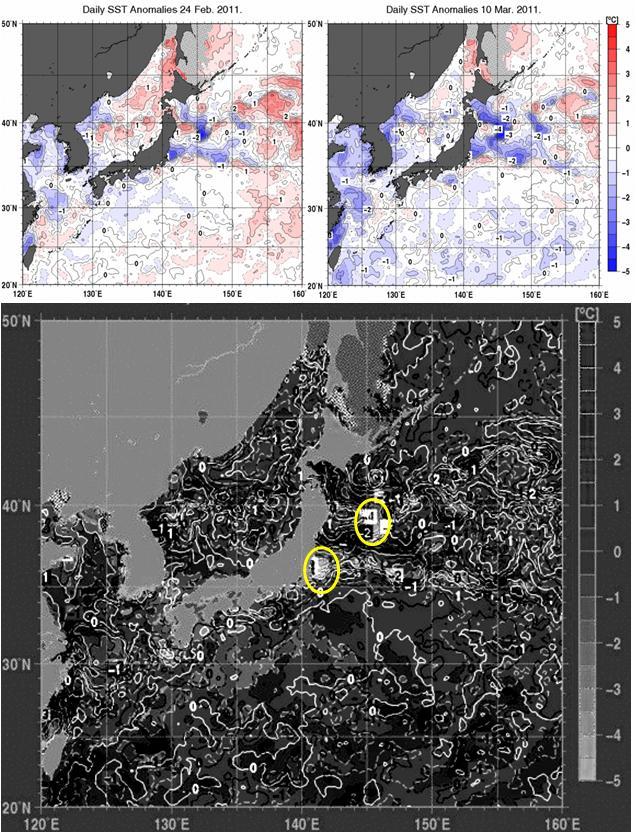 海水温解析1.jpg