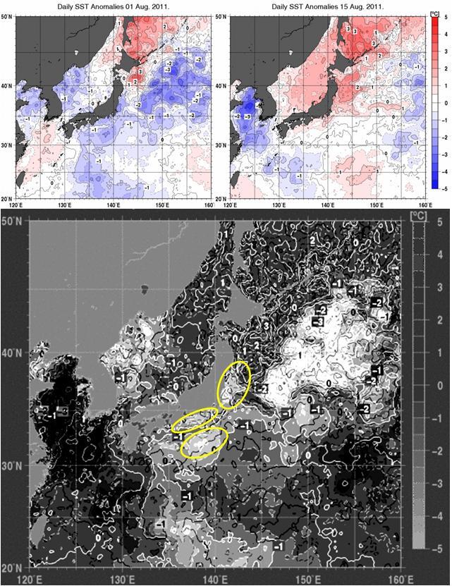 海水温解析3.jpg