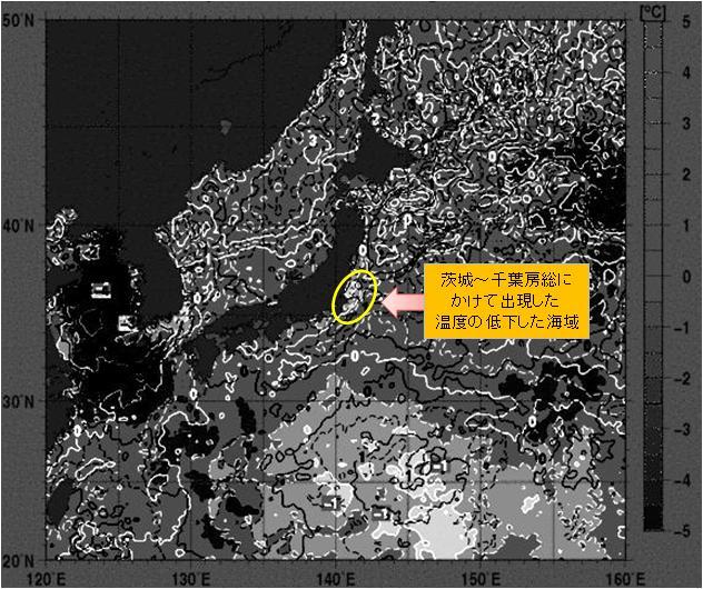 海水温解析20.jpg